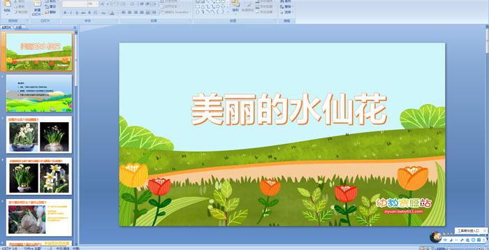 幼儿园大班科学活动《美丽的水仙花》课件