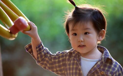 怎样培养宝宝的观察力?